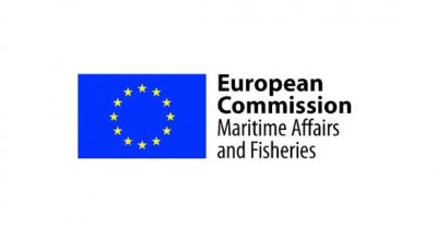 Expert Group on Fisheries Control - Workshop on digital tools for monitoring and reporting catches for SSF