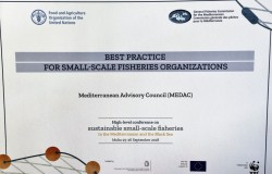 High-level conference on sustainable SSF in the Mediterranean and the Black Sea